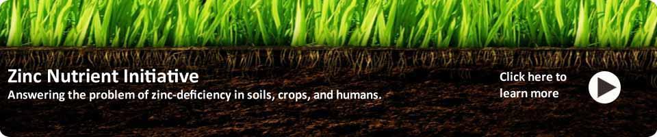 img_banner_crops_ZNI_Soil_Banner_rounded