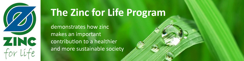 img_banner_zinc_for_life
