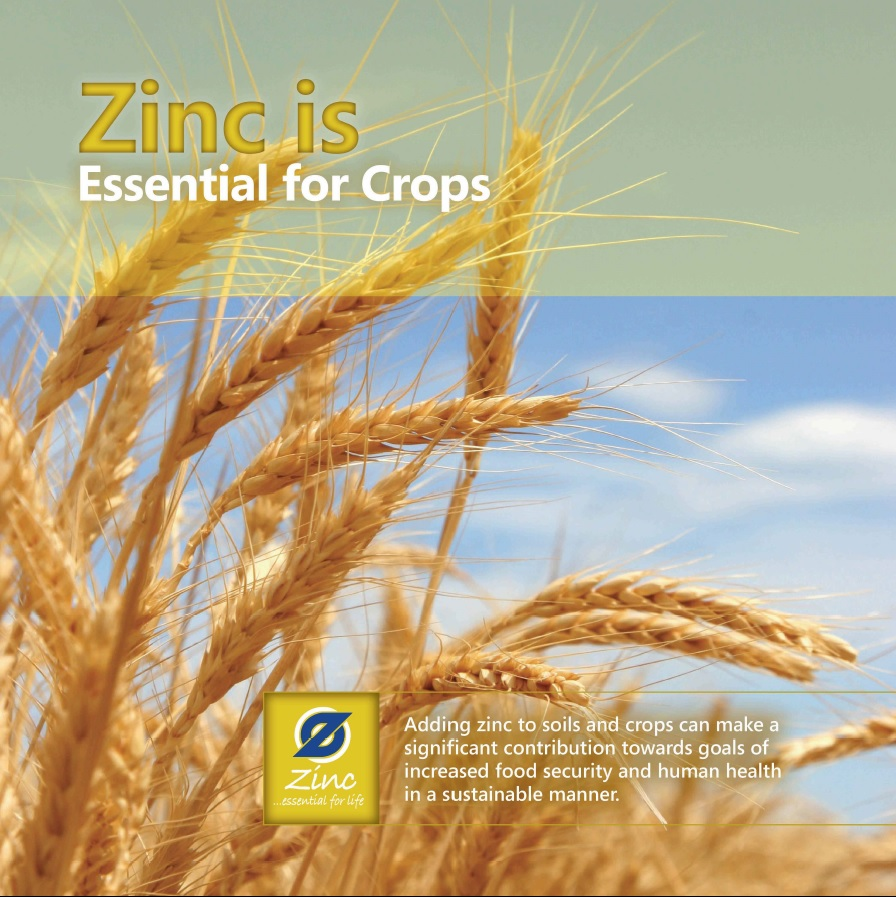 Zinc is Essential for Crops